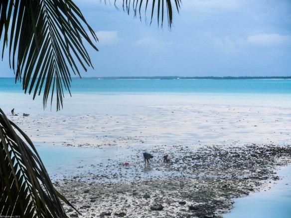 Back 'yard' of the best hotel on Tarawa 2010