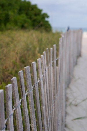 lines on the way to the beach