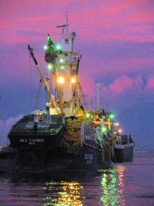 tuna boat twilight